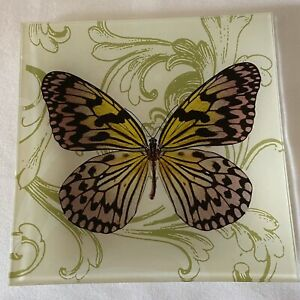 Two's Company Glass Butterfly Dish Plate Square