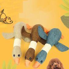 Chien jouet PET chiot mâcher grinçant grincement peluches jouets sonores