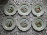 6 ASSIETTES A GIBIER EN PORCELAINE DE LIMOGES FRANCE