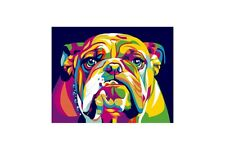 PAINT BY NUMBERS KIT ENGLISH BULLDOG