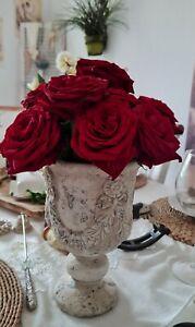 Planter Valo Planzschale Decor Bowl Vintage Look Shabby Chic Cottage 23cm