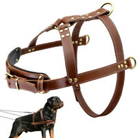 Real Leather Dog Harness for Large Breeds Boxer Doberman Rottweiler Heavy Duty