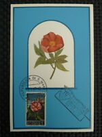 SAN MARINO MK 1967 FLORA BLUMEN FLOWERS MAXIMUMKARTE MAXIMUM CARD MC CM c1379