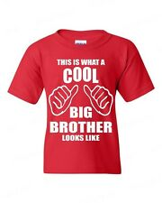 YOUTH T-SHIRT This is what a cool Big Brother Looks Like funny newborn gift tee