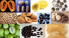 MIX of 205 tropical fruit/nut/tree seeds jackfruit/lychee/tamarind/passion/grape
