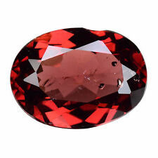 None (No Enhancement) Oval Loose Natural Rubies