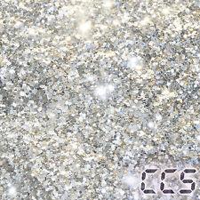 25g XXL Metal Flakes Silver Silber Effektlack Pigment 1,0mm