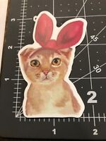 Kitty Bunny Funny Adult Humor Skateboard /Laptop/ Guitar Decal Sticker