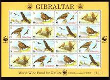 GIBRALTAR, 1996 WWF Rotmilan Kleinbogen **,  (10464)