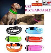 USB recargable perro mascota collar intermitente Luminoso Led Luz de Seguridad de Nylon UK