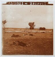 Bodies Da Zuavi Guerre 14-18 Francia Foto Stereo PL46Th2n10 Placca Vintage
