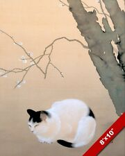 BLACK & WHITE CAT UNDER JAPANESE PLUM TREE PAINTING PET ART REAL CANVAS PRINT