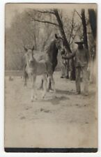041020 VINTAGE RPPC REAL PHOTO POSTCARD FARMER WITH MARE AND FOAL HORSES c1910
