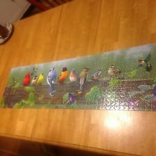 SONGBIRDS ~ 750 PC. PANORAMIC PUZZLE FROM BUFFALO, EUC COMPLETE