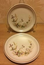 """M&S Marks and Spencer - Harvest - Pair of 6 1/2"""" 17 cm Side / Tea / Bread Plates"""