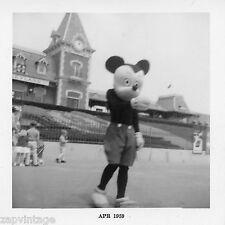 Rare Vintage 1959 Black & White Disneyland (Disneylandia) Mickey Mouse Photo