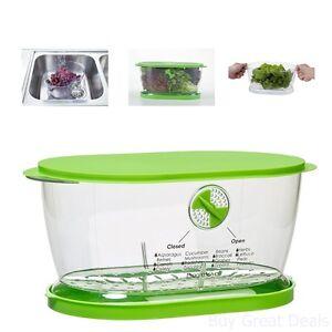 Prepwork Lettuce Keeper 4.7 Quart Home Kitchen Supply Storage Food Organizer Aid