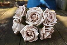 6 x Latte Macchiato Pallido Beige tridimensionale Schiuma Open Cottage Roses 6cm