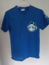 Vintage Asheville Tourists Minor League Baseball Pullover Jersey Youth Lg SGA