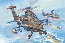 Hobby Boss 87260 1/72 PLA WZ-10 Thunderbolt Attack Helicopter