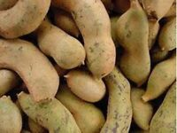 Tamarind Pods-2 Lb-See Store For More Sizes Water health sweet Sour fresh