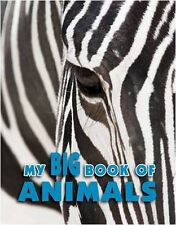 Animal Encyclopedia (Igloo Books Ltd Encyclopedia 240 PAD 2),Igloo Books Ltd