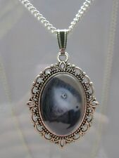 African grey parrot bird photo glass dome pendant charm necklace antique silver