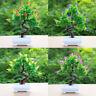HD_ Artificial Flower Pine Tree Potted Bonsai Party Shop Hotel Desktop Office De