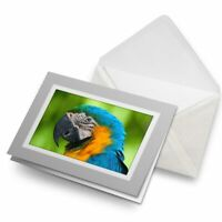 Greetings Card (Grey) - Colourful Parrot Tropical Bird  #3668