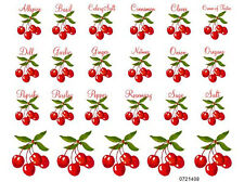 VinTaGe IMaGe SHaBbY CHeRrY SPiCe LaBeLs KiTcheN WaTerSLiDe DeCALs