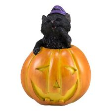 "Mini Miniature Black Cat In Jack-O-Lantern Pumpkin Figurine 3""H New! Halloween"