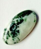 Natural Tree Agate Oval Shaped 45x24x5 MM 52.22 Ct Oval Shaped Cabochon by HK International Gems