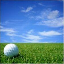 10 Palline da Golf in vendita per il tuo Feed di formazione invernali, la tua passione greengrass