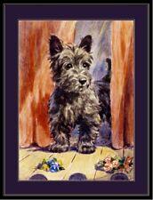 English Picture Print Scottish Terrier Puppy Dog Art