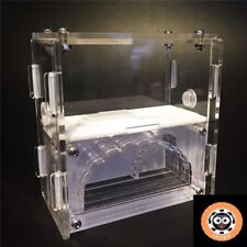 Acrylic Ant Nest Housing Ant Farm Formicarium Ant Chamber With Outworld