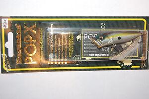megabass pop x popx made in japan bass topwater popper 1/4oz sexy shad 64mm