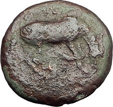 LARISSA Thessaly Genuine 360BC Authentic Ancient Greek Coin NYMPH & HORSE i62559