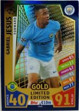 Manchester City UEFA Champions League Soccer Trading Cards