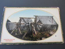 c 1907 Postcard Trapper Drying Pelts Jack Fish Lake Superior Ontario Canada CPR