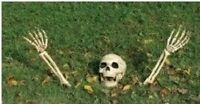 Halloween Scary Skeleton Bones With Ground Stakes / Lawn Decoration Prop/Party