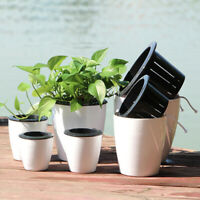Self-watering Plant Flower Pot Wall Hanging Plastic Planter House Garden Exotic