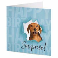 Dachshund sausage dog surprise birthday card