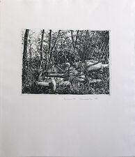 JENS CORDS - Garbage dump in the forest (1978). Autographed Etching, Pencil art