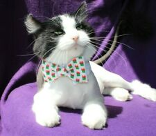 New Cat Holiday Christmas Bow Tie on White Shirt Collar Pet Bow Tie