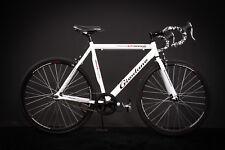 "28"" Zoll Alu Rennrad Single Speed GIORDANO Race Bike Fixi Fahrrad Rh 56cm weiss"