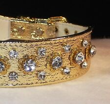 Rhinestone Dog Collar Gold Designer Luxury Crown Jewel Premium USA made Bling!