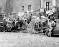 The Italian Job (1969) Cast     10x8 Photo