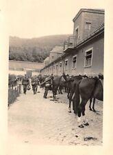 Deutsche Soldaten Pferde Quartier in Polen