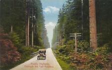 Photo. ca 1924. Surrey, BC Canada.  Pacific Highway - auto