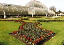 (12135) Postcard London Royal Botanic Gardens Kew